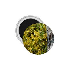 Yellow Bells Small Magnet (Round)