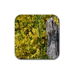 Yellow Bells Rubber Drinks Coaster (Square)