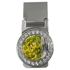 Yellow Bells Money Clip With Gemstones (round)