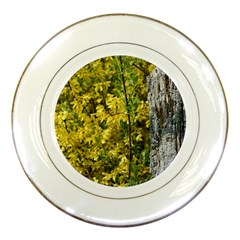 Yellow Bells Porcelain Display Plate