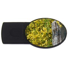 Yellow Bells 4gb Usb Flash Drive (oval)
