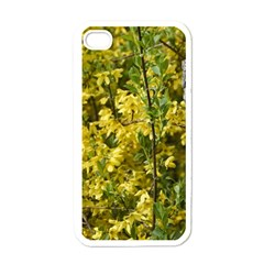 Yellow Bells White Apple iPhone 4 Case