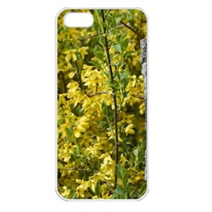 Yellow Bells Apple iPhone 5 Seamless Case (White)