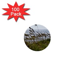 Cocoa Beach, Fl 100 Pack Mini Button (Round)