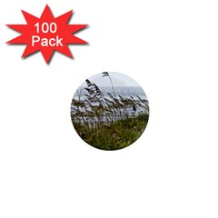 Cocoa Beach, Fl 100 Pack Mini Magnet (round)
