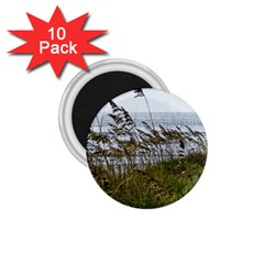 Cocoa Beach, Fl 10 Pack Small Magnet (Round)