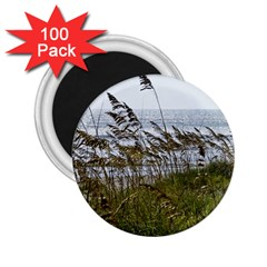 Cocoa Beach, Fl 100 Pack Regular Magnet (Round)