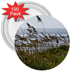Cocoa Beach, Fl 100 Pack Large Button (round)
