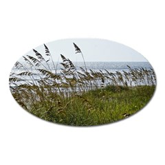 Cocoa Beach, Fl Large Sticker Magnet (Oval)