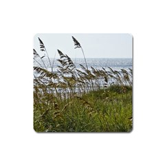 Cocoa Beach, Fl Large Sticker Magnet (Square)