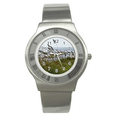 Cocoa Beach, Fl Stainless Steel Watch (round)