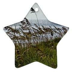 Cocoa Beach, Fl Twin-sided Ceramic Ornament (Star)