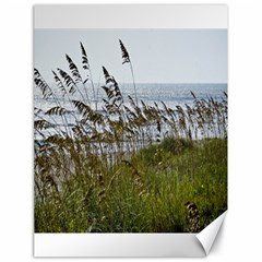 Cocoa Beach, Fl 18  x 24  Unframed Canvas Print