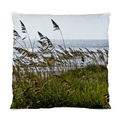 Cocoa Beach, Fl Single Sided Cushion Case