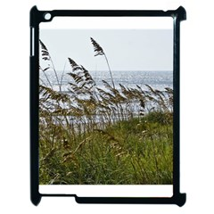Cocoa Beach, Fl Apple Ipad 2 Case (black)