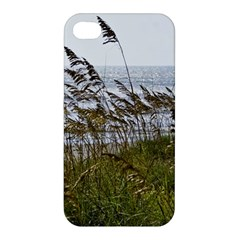 Cocoa Beach, Fl Apple Iphone 4/4s Hardshell Case