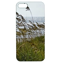 Cocoa Beach, Fl Apple iPhone 5 Hardshell Case with Stand