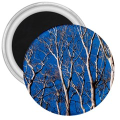 Trees on Blue Sky Large Magnet (Round)