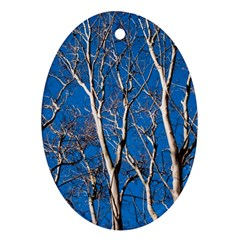 Trees on Blue Sky Ceramic Ornament (Oval)