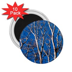 Trees On Blue Sky 10 Pack Regular Magnet (round)
