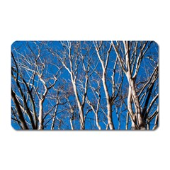 Trees On Blue Sky Large Sticker Magnet (rectangle)