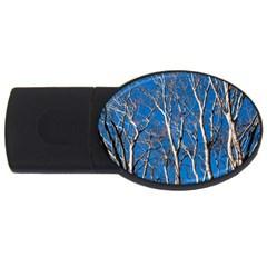 Trees on Blue Sky 2Gb USB Flash Drive (Oval)