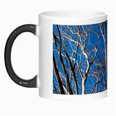 Trees on Blue Sky Morph Mug