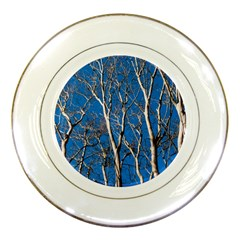 Trees On Blue Sky Porcelain Display Plate