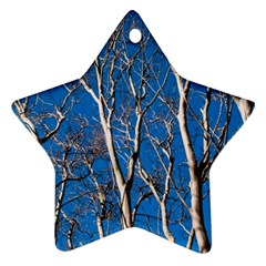 Trees On Blue Sky Twin Sided Ceramic Ornament (star)