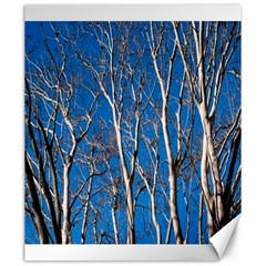 Trees on Blue Sky 20  x 24  Unframed Canvas Print