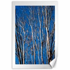 Trees on Blue Sky 20  x 30  Unframed Canvas Print