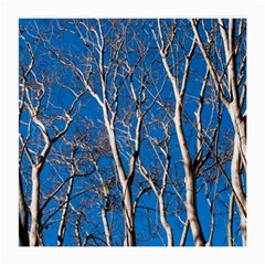 Trees on Blue Sky Single-sided Large Glasses Cleaning Cloth