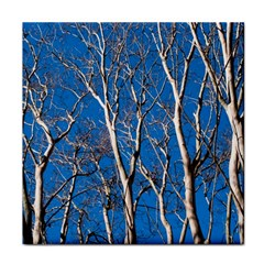 Trees on Blue Sky Face Towel