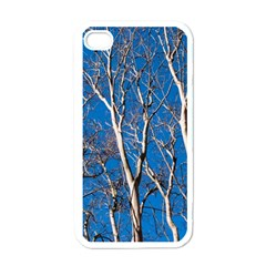 Trees on Blue Sky White Apple iPhone 4 Case
