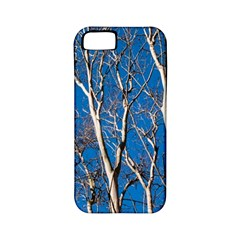 Trees On Blue Sky Apple Iphone 5 Classic Hardshell Case (pc+silicone)