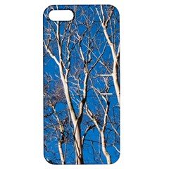Trees on Blue Sky Apple iPhone 5 Hardshell Case with Stand