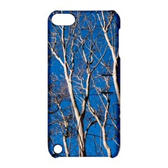Trees on Blue Sky Apple iPod Touch 5 Hardshell Case with Stand
