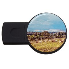 Farm View 2Gb USB Flash Drive (Round)