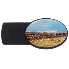 Farm View 2gb Usb Flash Drive (oval)