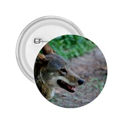 Red Wolf 2.25  Button
