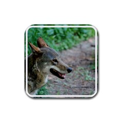 Red Wolf Drink Coasters 4 Pack (square)