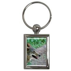 Red Wolf Key Chain (Rectangle)