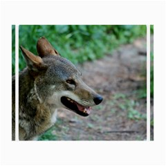 Red Wolf Glasses Cloth (small, Two Sided)