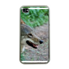 Red Wolf Apple iPhone 4 Case (Clear)