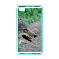 Red Wolf Apple iPhone 4 Case (Color)