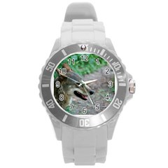 Red Wolf Plastic Sport Watch (Large)