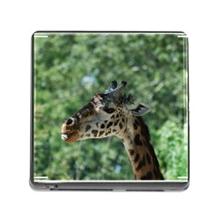 Cute Giraffe Memory Card Reader with Storage (Square)