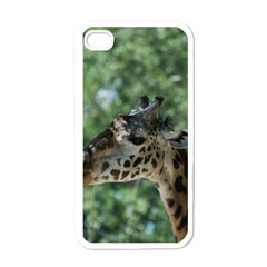 Cute Giraffe Apple iPhone 4 Case (White)
