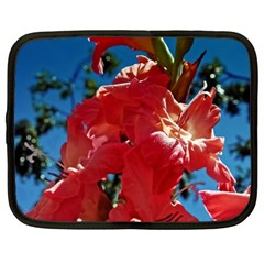 Abeautiful Coral Gladioli  Netbook Case (Large)