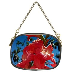 Abeautiful Coral Gladioli  Chain Purse (one Side)